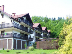 Отель Apartment Górska 54  Щирк