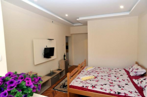 Гостиница Trebjesa Apartment  Никшиц
